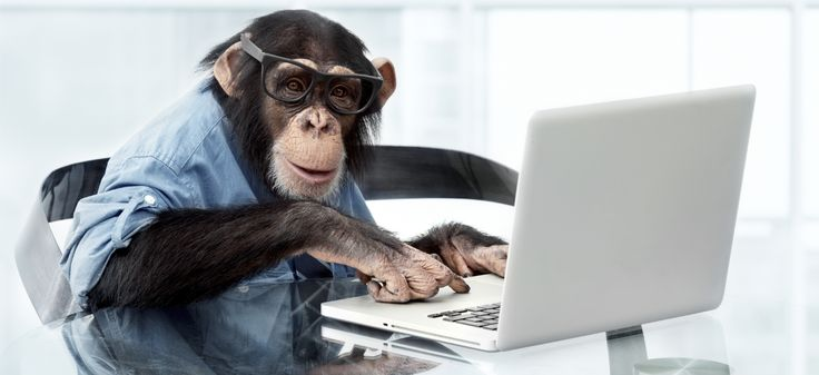 The Infinite Monkey Theorem Comes To Life