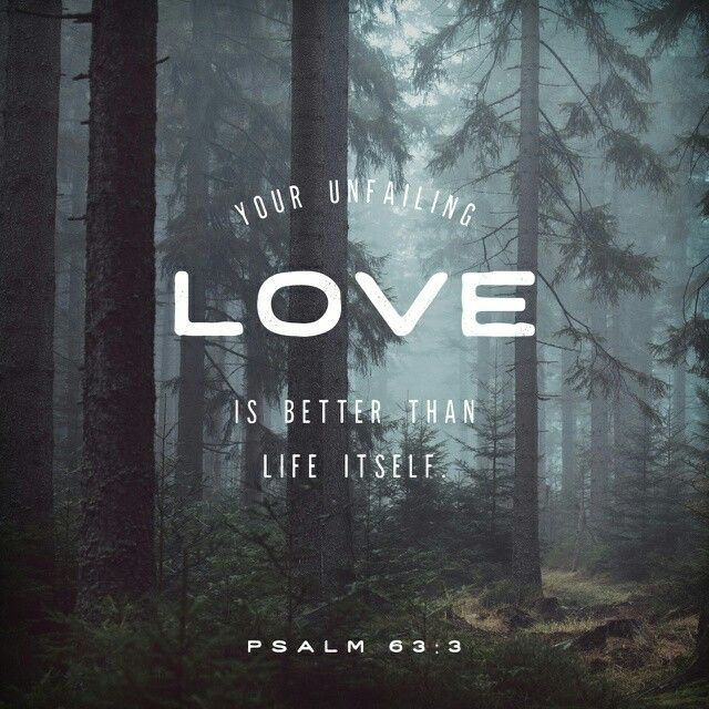 Because your love is better than life, my lips will glorify you. I will praise you as long as I live, and in your name I will lift up my hands. Psalm 63:3‭-‬4 NIV