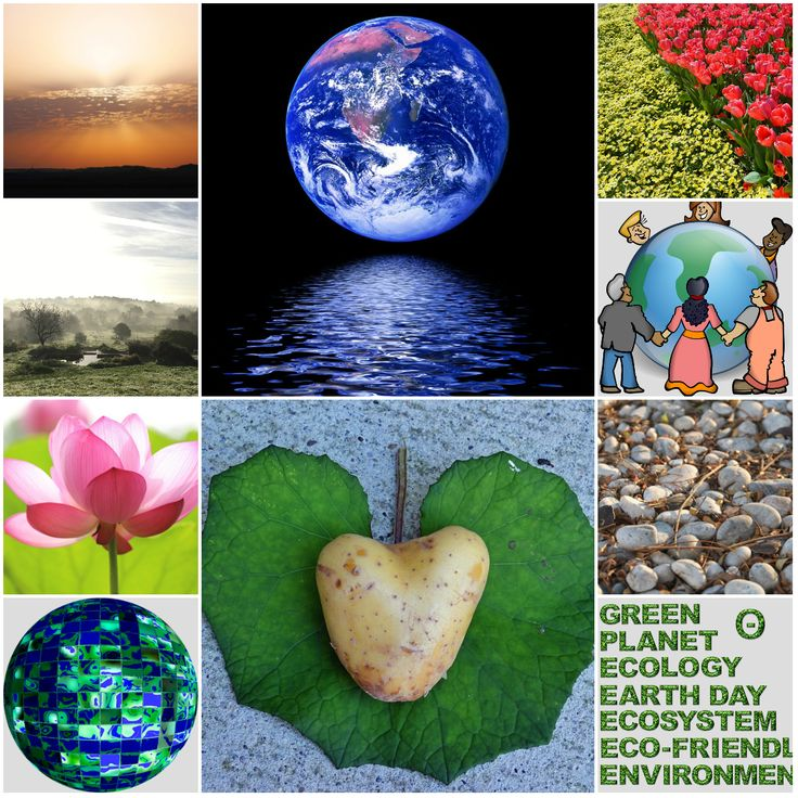 "Motivation Mondays: Earth Day for Environmental and Climate Literacy ""On Earth Day, we celebrate all the gifts the world and nature make available to us. We recognize our complete dependence on its bounty. And we acknowledge the need for good stewardship to pr… #earthday #motivation #literacy"