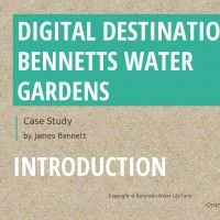 Bennett Water Gardens Case Study / Action Plan