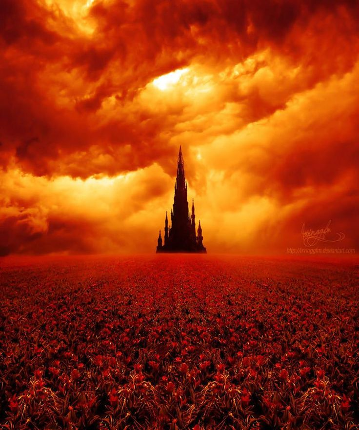 The Tower and the field of roses (The Dark Tower by Stephen King)