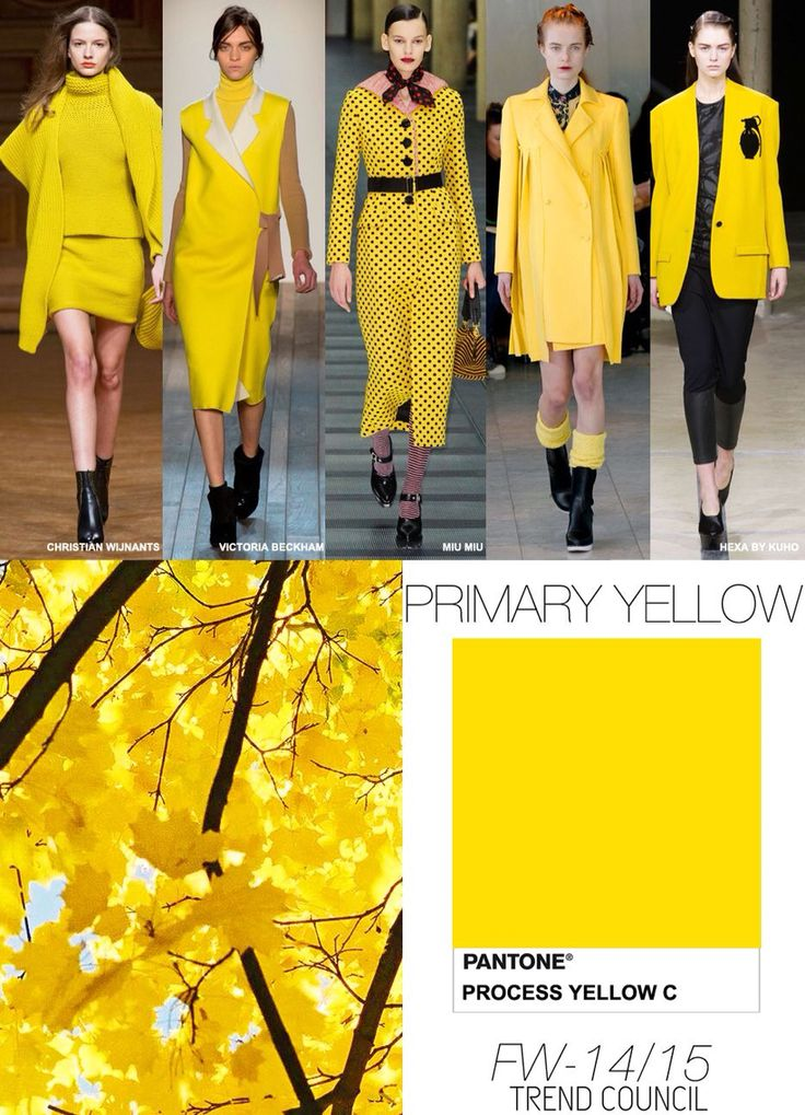 Pantone / Yellow / FW 2015 | Fashion Trends Colors FW 2015 ...