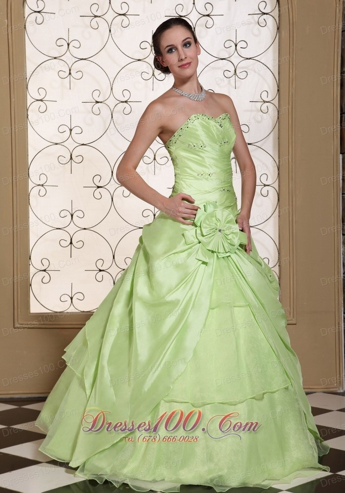 Prom dresses stores in gainesville fl