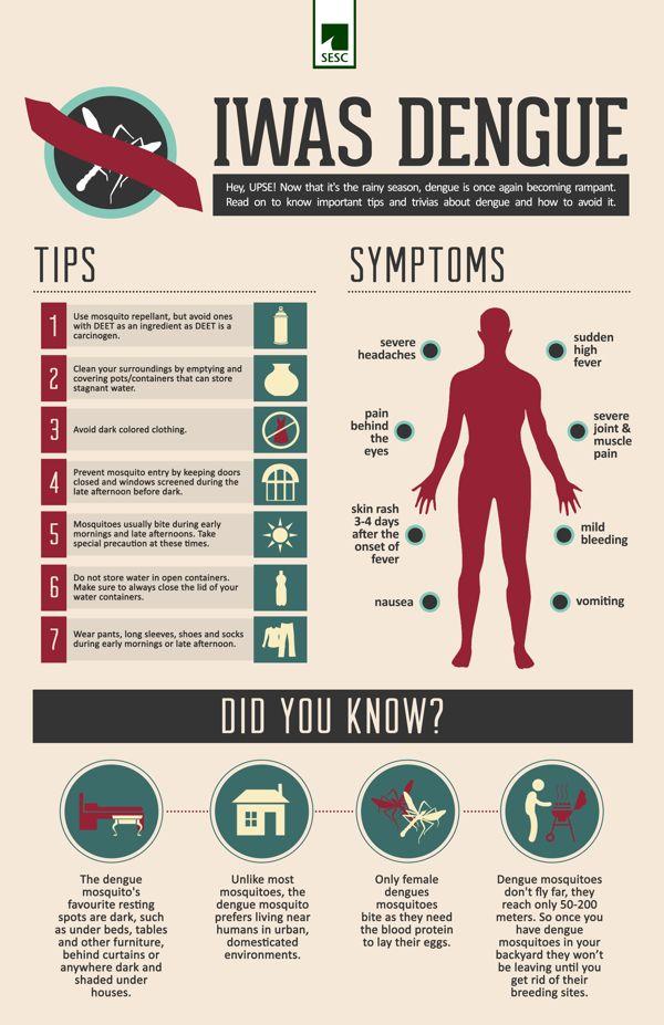 Dengue Infographic on Behance