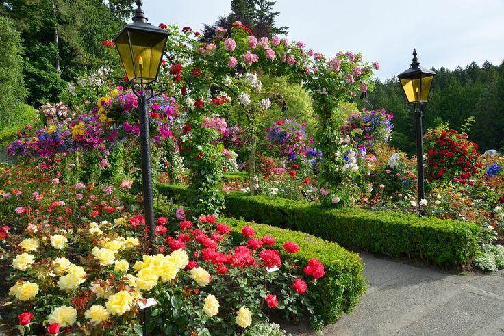 Entrance To Portland Rose Gardens : Lantern entrance in the rose garden butchartgardens