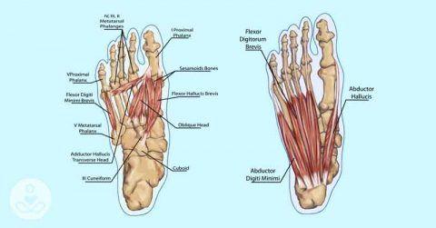 држање вежбе ноге