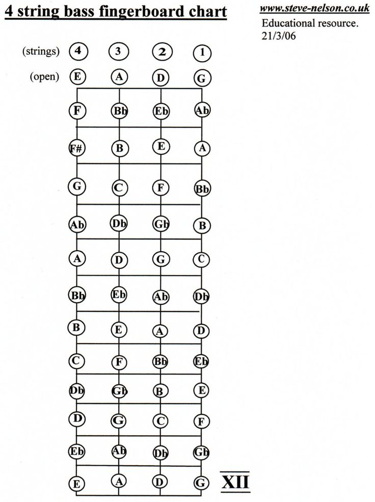 4 string bass guitar notes 98 Use This Chart To Familiarize Yourself With The Fingerboard.