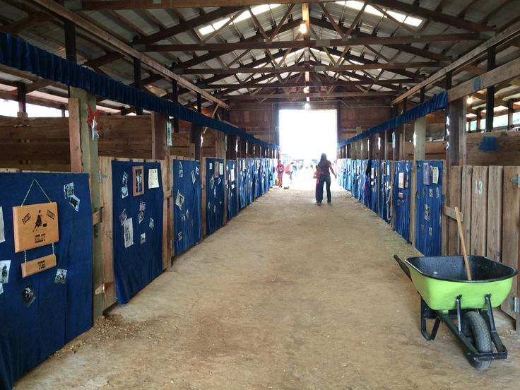 44 best images about 4h stall decorations on pinterest for Four stall horse barn