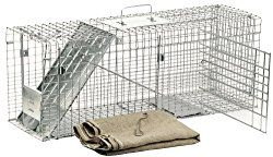 how to trap a feral cat humanely, feral cat traps.  Get one designed specifically for feral cats, then contact your local humane society for the number of the feral cat organization in your area.