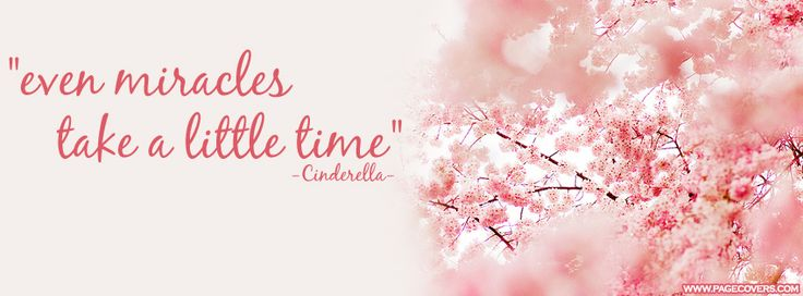 Cinderella, Facebook and Inspirational quotes on Pinterest