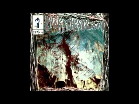 Buckethead - Pike 227 - Cavernous