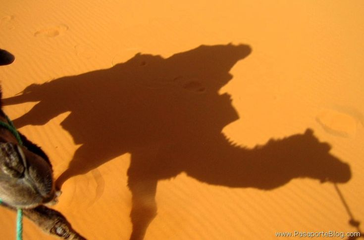 Dunas Merzouga Sahara MARRUECOS