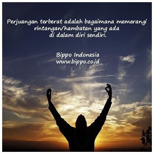 Seseorang yang menolak memperbarui cara-cara kerjanya yang tidak lagi menghasilkan, berlaku seperti orang yang terus memeras jerami untuk mendapatkan santan ( Mario Teguh) - Bippo Indonesia (www.bippo.co.id)