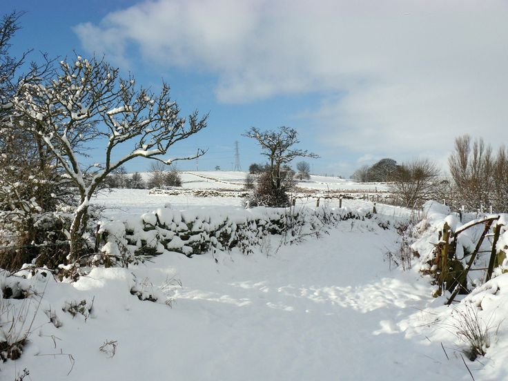 Snow scene, Wilsden, by Judy Caunt (January 2013 cover)