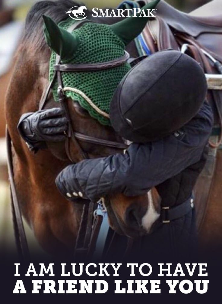Do you feel lucky to have your horse as a friend? We sure do!