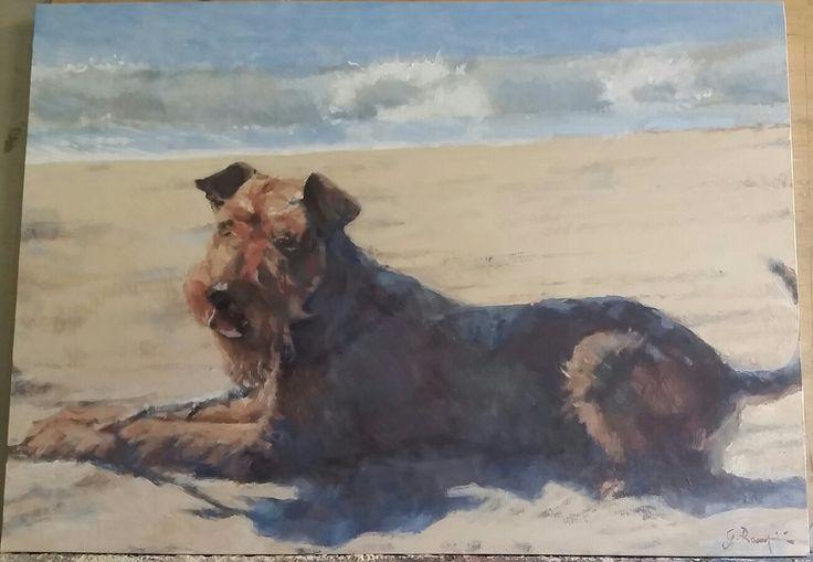 Terrier  OLIO SU TELA  50X70