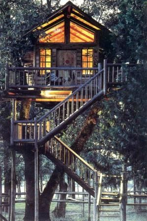 Out 'n' about treesort, oregon. A bed and breakfast in a treehouse!
