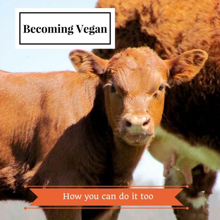 Becoming vegan--my story in a nutshell! #vegan #howto #govegan #myveganstory #fortheanimals #veganblog