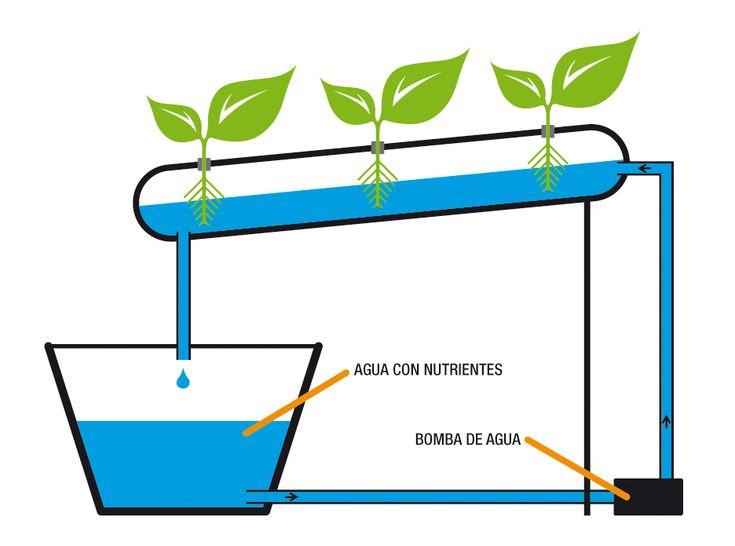 56 best sistemas de riego images on pinterest irrigation for Sistema de riego vertical