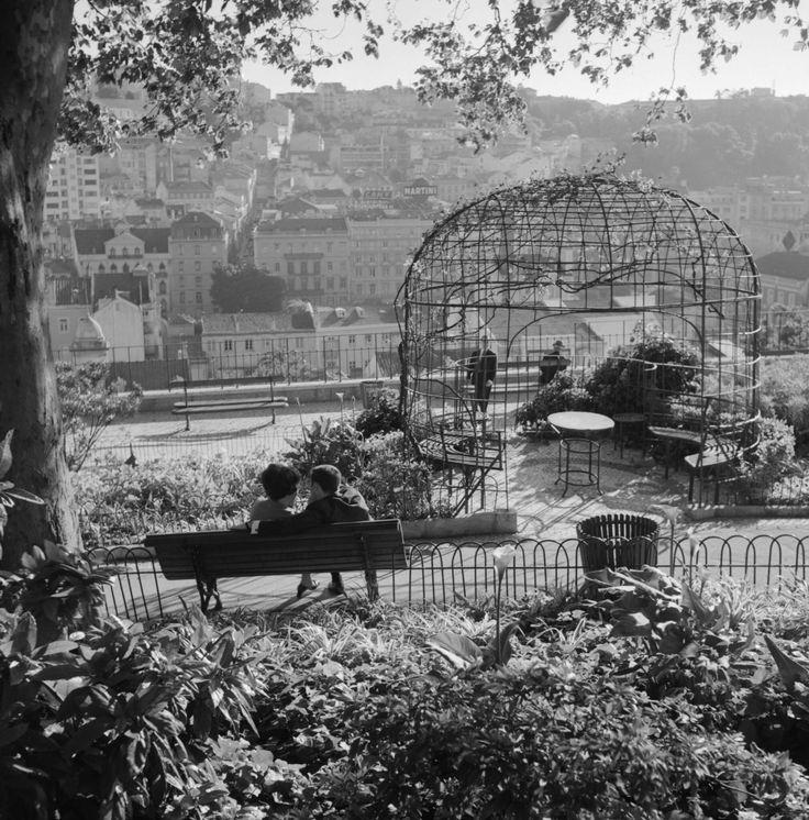 arturpastor: Lisboa, Jardim do Torel. Década de 60. A fotografia mais vista no Tumblr Artur Pastor, em cada mês de 2015. Setembro de 2015.