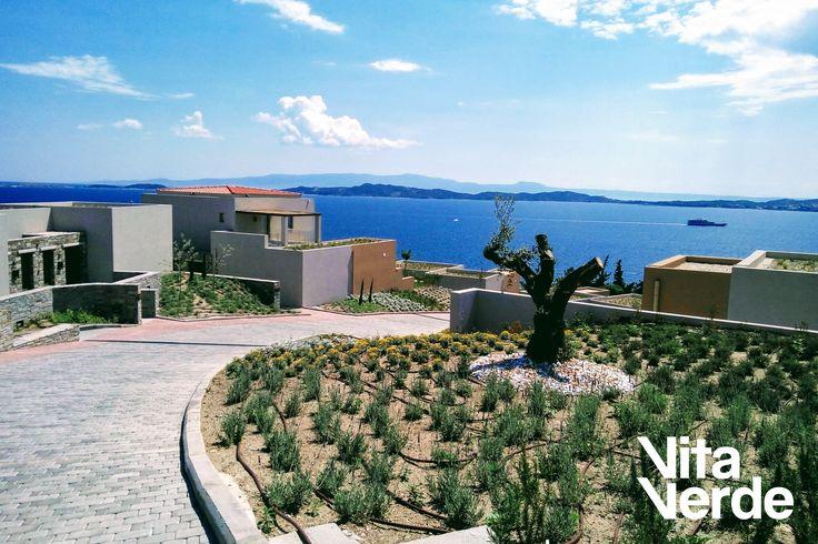 What a breathtaking view! #vitaverde_gr #landscapecompany #5starhotel