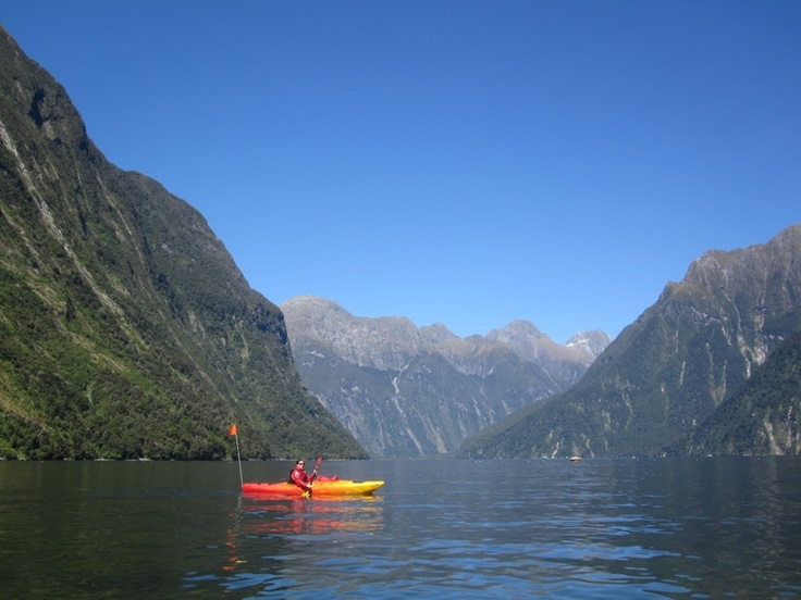 Secluded Milford Sound Kayaking