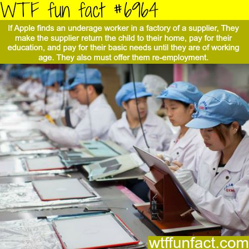 Underage apple factory workers - WTF fun fact
