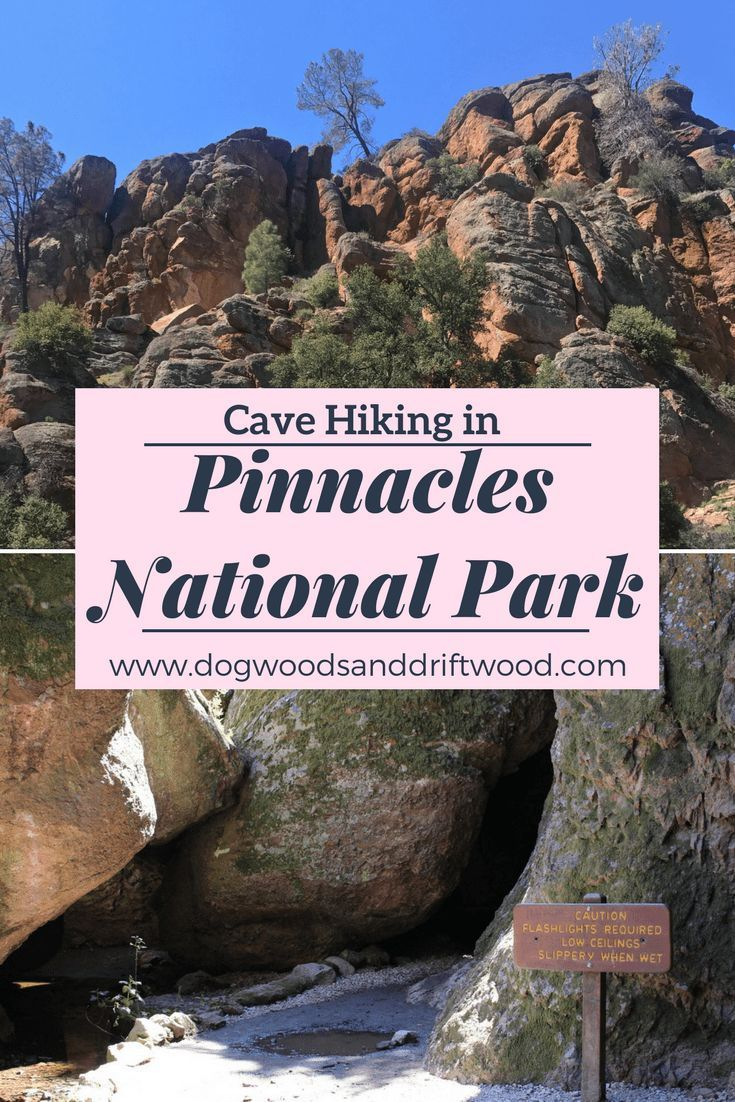 One Day In Pinnacles National Park Day National Nationalparks Park Pinnacles Pinnacles National Park California National Parks National Parks