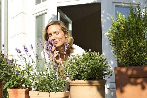 Léčivé rostliny slibují široké spektrum použití při různých zdravotních potížích. Předem si ale vždy zjistěte nejen klady, ale i zápory – tedy případné negativní účinky. A v případě jakýchkoli, byť i drobných pochybností svůj záměr konzultujte s lékaři