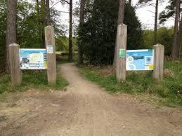 forest trails signs - Google-søk