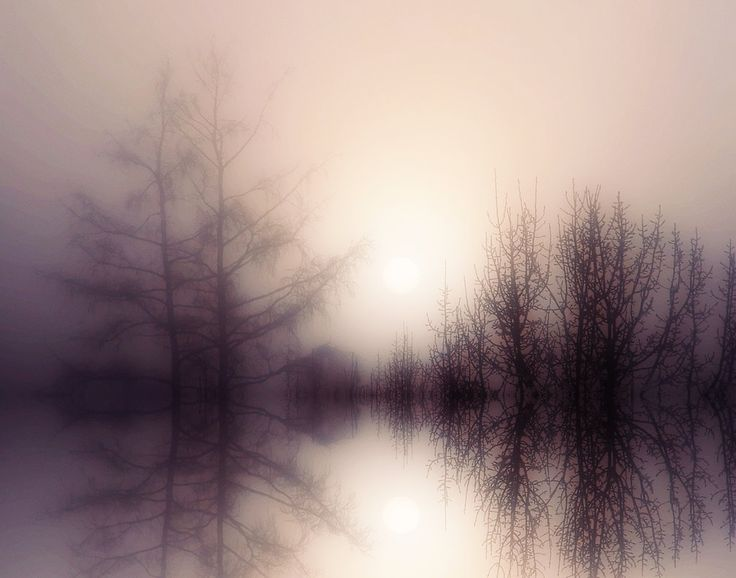 Fog Lake by ~BBs-Brushes on deviantART