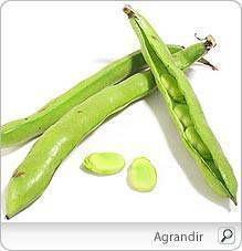 Comment profiter au maximum des bienfaits des fèves ? Comment les mettre au menu ? Découvrez astuces et conseils pour en tirer la…