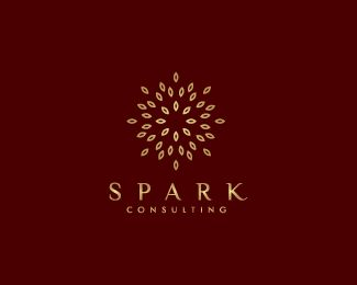Spark Consulting Logo design - Abstract logo design looks like a sun or flower that suitable for consulting, spa, salon, yoga, real estate, etc. Price $299.00
