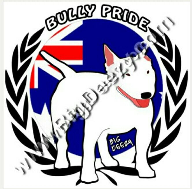 Big Deezy's Staffy and Big Breeds Shop Australia. www.BigDeezy.com // @bigdeezydotcom  #bigdeezydotcom #staffies #pitbulls #bullybreeds #staffy #staffordshirebullterrier #bigdogbreeds #custom #clothes #printing #pets #Dogs #adoptdontshop #dontbullymybreed #shop
