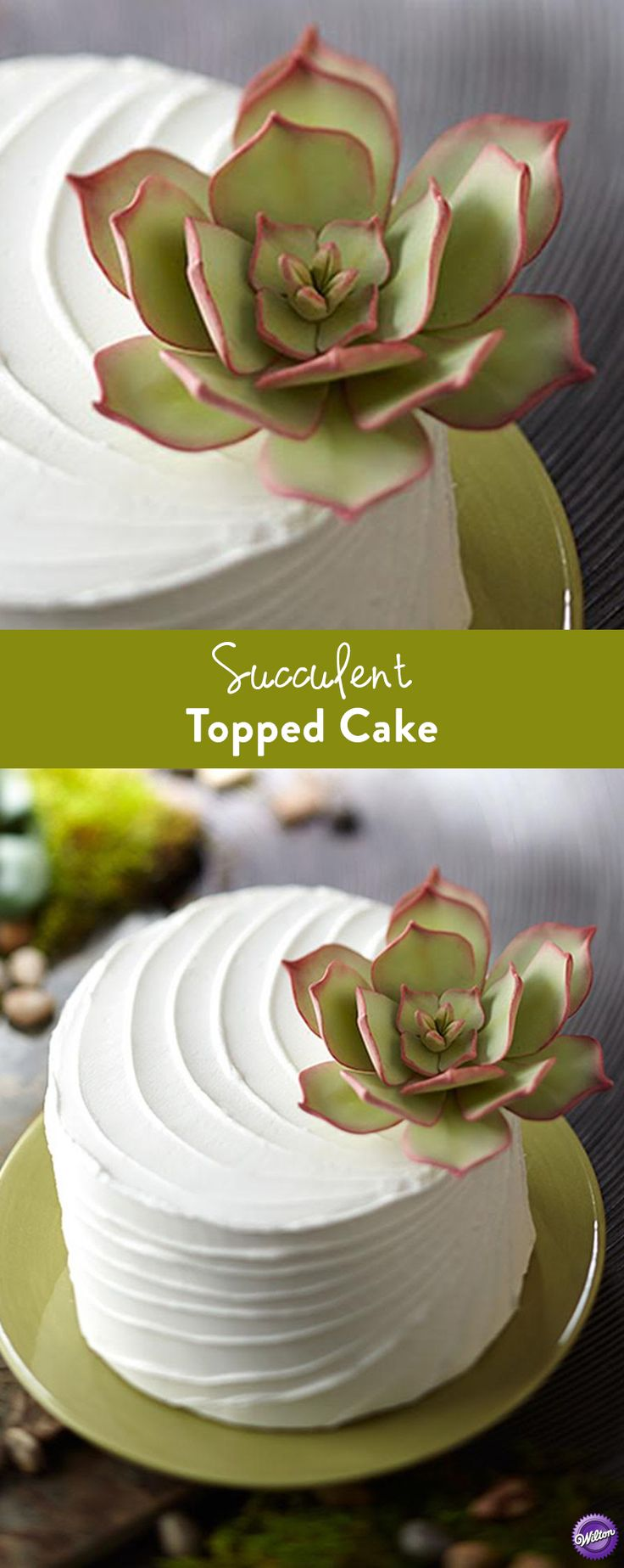 521 best cake techniques tutorials images on pinterest fondant how to make a succulent topped cake a fondant succulent plant adds a fresh izmirmasajfo Gallery