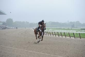 Belmont Stakes 2012: I'll Have Another shows good energy in gallop this morning