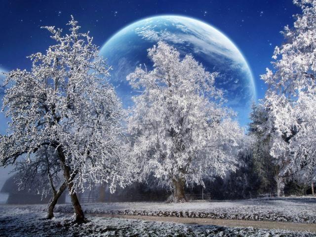 Trees Hoarfrost Planet Wallpaper Hd Fantasy 4k Wallpaper Wallpapers Den Free Winter Wallpaper Winter Wallpaper Desktop Winter Wallpaper