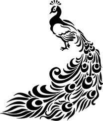 image result for black and white peacock drawing