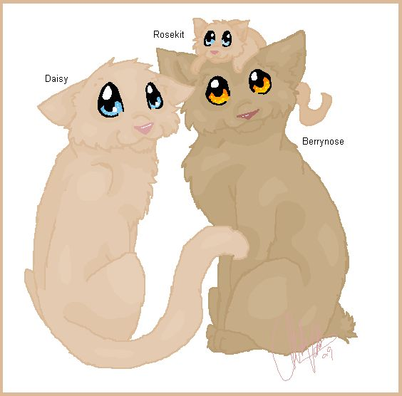 316 Best Images About Warrior Cats On Pinterest