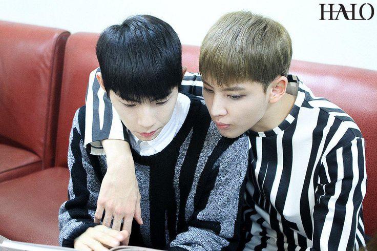 HALO 헤일로 Dino & Inhaeng