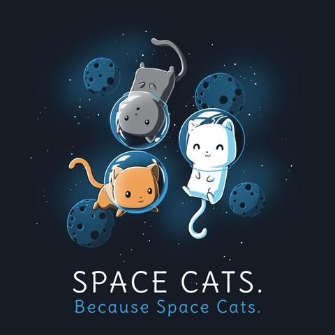 Space Cats | TeeTurtle
