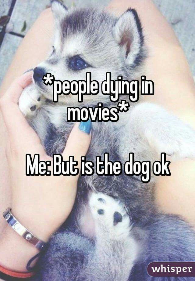 I don't cry when people in movies die. But when it's a dog... the waterworks start.