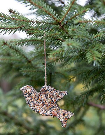 homemade bird seed christmas ornament (it's the 4th in the slideshow of ideas, with how-to turtorial link at the bottom.)