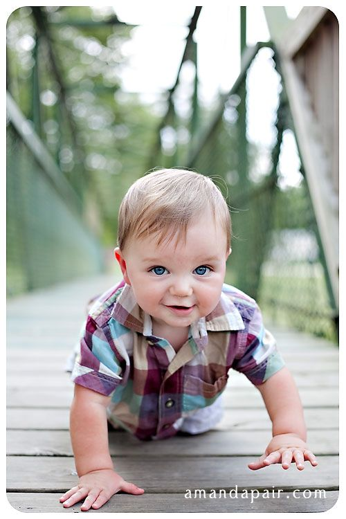 7 Month Picture Ideas For Baby Boys | He wanted to pull up on the fence to stand, but couldn't *quite* get ...