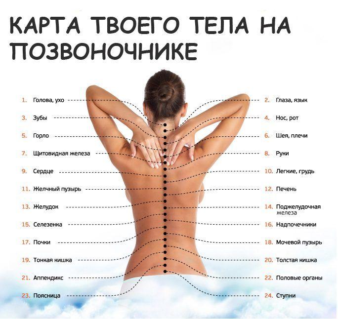 Оказывается, боли с спине могут иметь совершенно разные причины, ведь проблемы могут скрываться совершенно в других органах, в зависимости от местоположения очага боли.