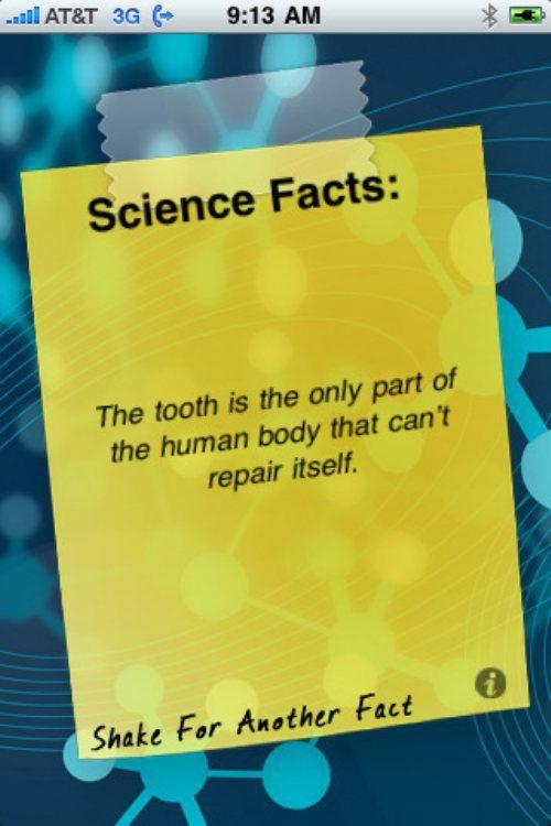 #dental #teeth #health #heal #anatomy