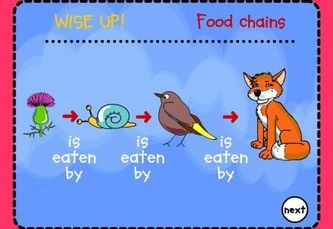 My kids LOVED this interactive site for learning about foo chains.  It provides a lot of examples and even shows them how it works.  Food Chains - Interactive Learning Sites for Education