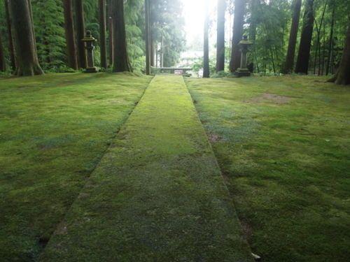 Japon. Chihiron jardina