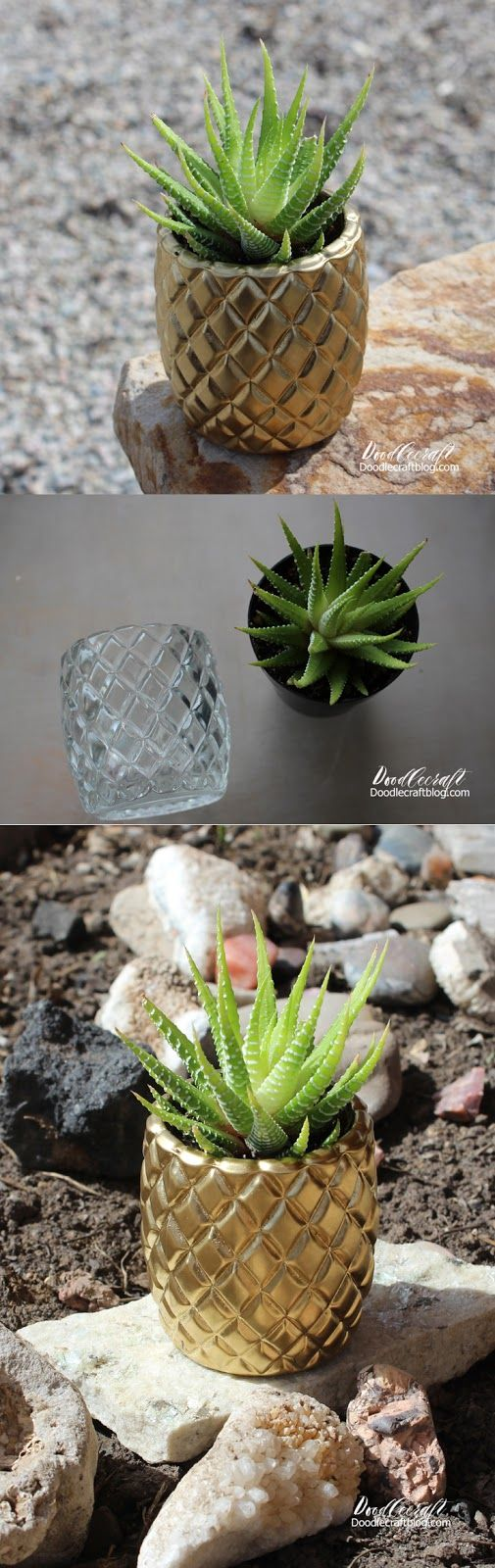 Pineapple Succulent Planter! Such a darling little plant, the perfect gift for Mother's day! It only takes minutes to make! Minus the paint drying time, it takes 15 minutes or less!