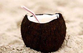 Lait de coco : quels apports nutritionnels ?